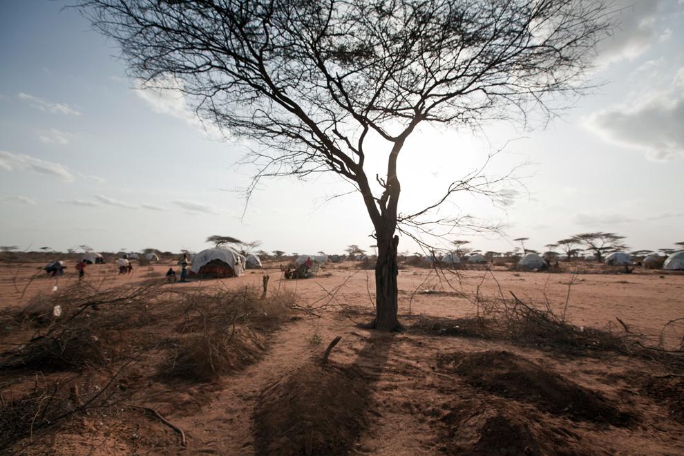 Somalia, campo de refugiados de Dadaab
