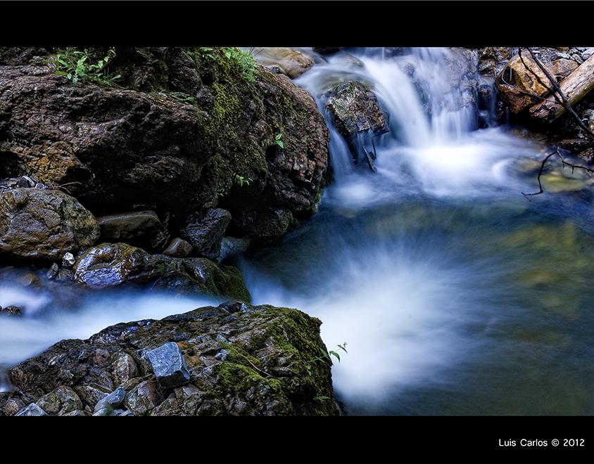 El agua lo llena todo en el Lago Negro Schwarzsee de Suiza