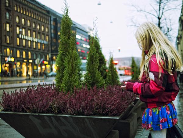 Nunca falta una maceta ni una rubia en Helsinki