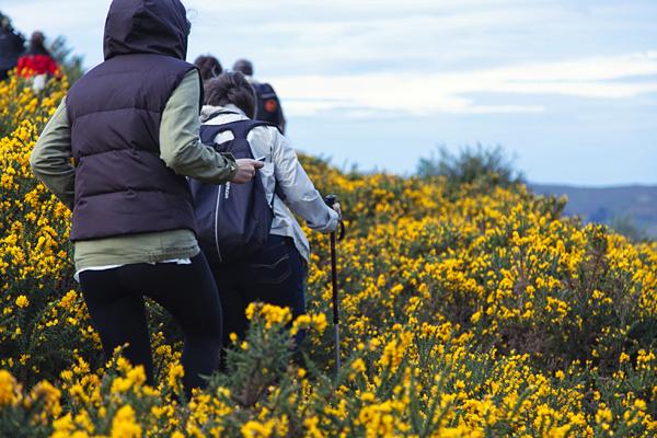 Caminando por el parque natural de Saja-Besaya, Cantabria